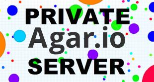 agar.io private server play