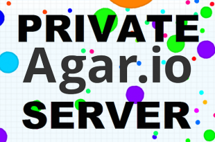 agar.io private server play